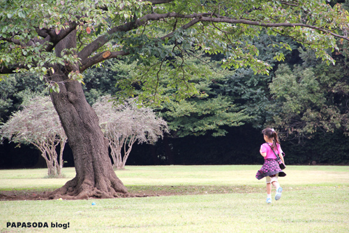 tree_01.jpg